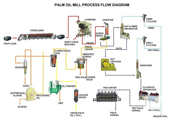 machine presse à huile de palme fruit